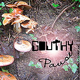 GOUTHY, Pause, Cover